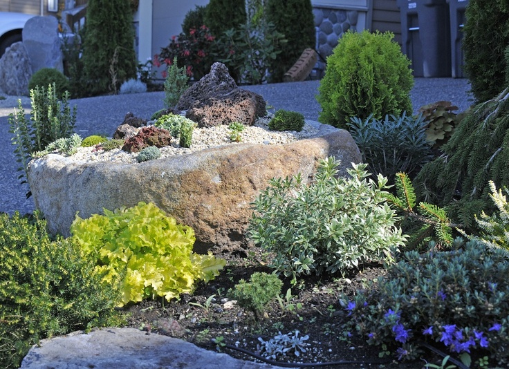 Roger Horan is a talented landscape artist and he came out from Ontario to install an alpine garden in the front yard of one of our client's home.