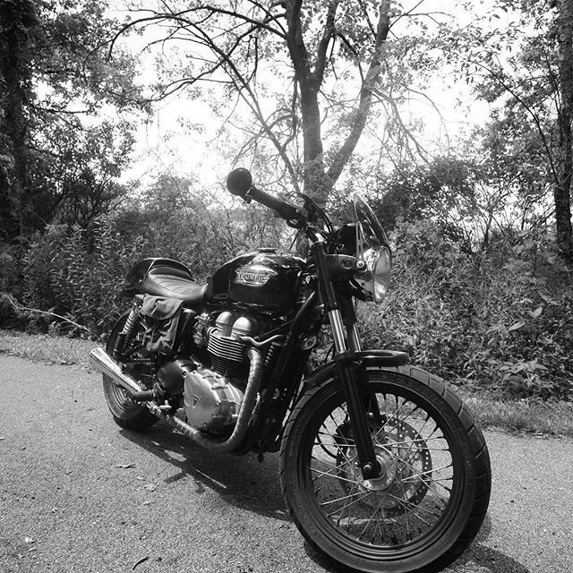 Life isn't black and white. It's a million gray areas don't you find? -- Ridley Scott Credit: @_motoalex Triumph Bonneville T100 Featuring the Midnight Tint Classic Flyscreen SHOP LINK IN PROFILE #Triumph #triumphbonneville #TriumphT100 #thruxton #thruxton900 #triumphscrambler #triumphmotorcycles #fortheride #triumphofficial #triumphnation #caferacer #windshield #flyscreen #dartflyscreen #fortheopenroad