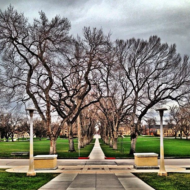 25+ Best Ideas About Colorado State University On