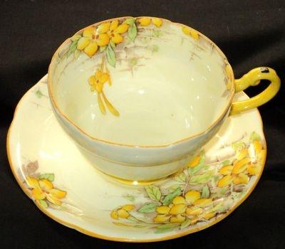 Paragon ARTSY YELLOW TROPICAL simplyTclub Tea cup and saucer