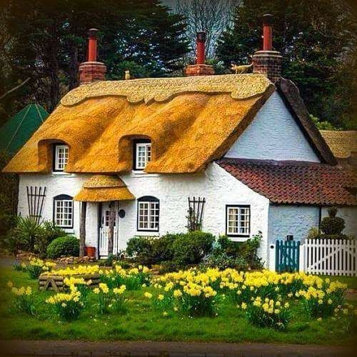 379 best thatched cottages paintings images on pinterest for Disegni casa cottage