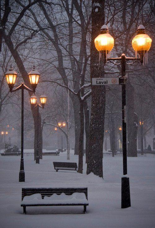Snowy Night, Montreal, Canada   via Facebook