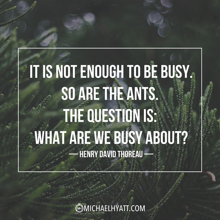 """It is not enough to be busy. So are the ants. The question is- What are we busy about?"" - Henry David Thoreau"