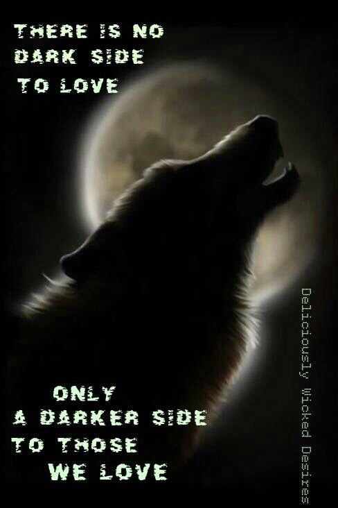 There is no dark side to love