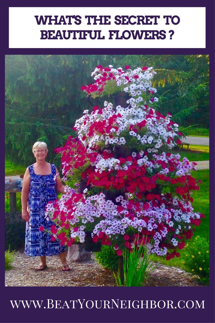 52 best Beat Your Neighbor Fertilizer images on Pinterest | Flower ...