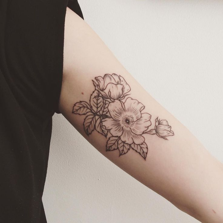 wild alberta roses, inner bicep tattoo  - Tattoo People