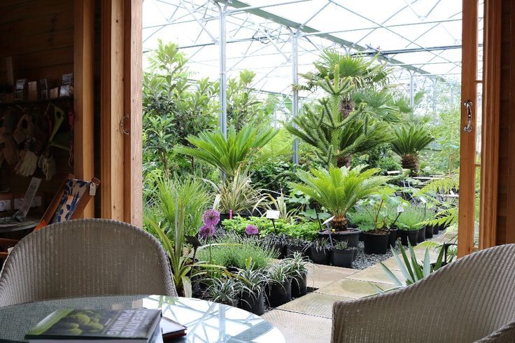 33 Best Images About My Favourite Nurseries On Pinterest