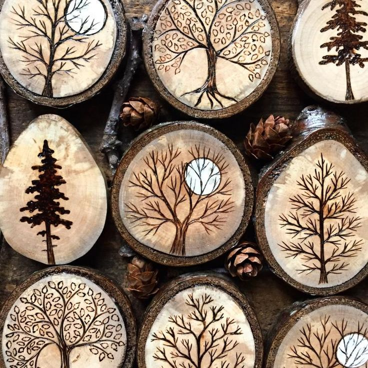 Wood burned pine tree wood slice magnet. Handmade by Forage Workshop