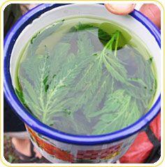 Marijuana Tea | Medical Cannabis Infused Tea