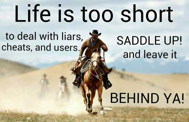 Horse Quotes | Horse quotes | Pinterest | Saddles, The o ...