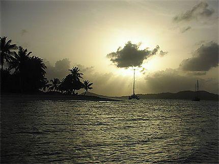 Les Grenadines//Saint-Vincent-et-les-Grenadines > Tobago Cays