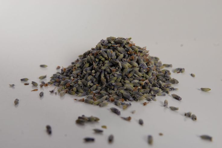 Lavender blossoms-Άνθος λεβάντας