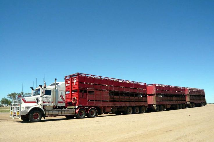 Transporte Carretero - Los sorprendentes trenes de carretera