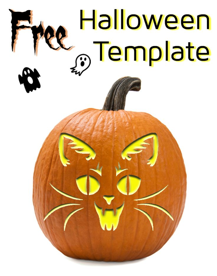 Vampire cat template for pumpkin carving and other