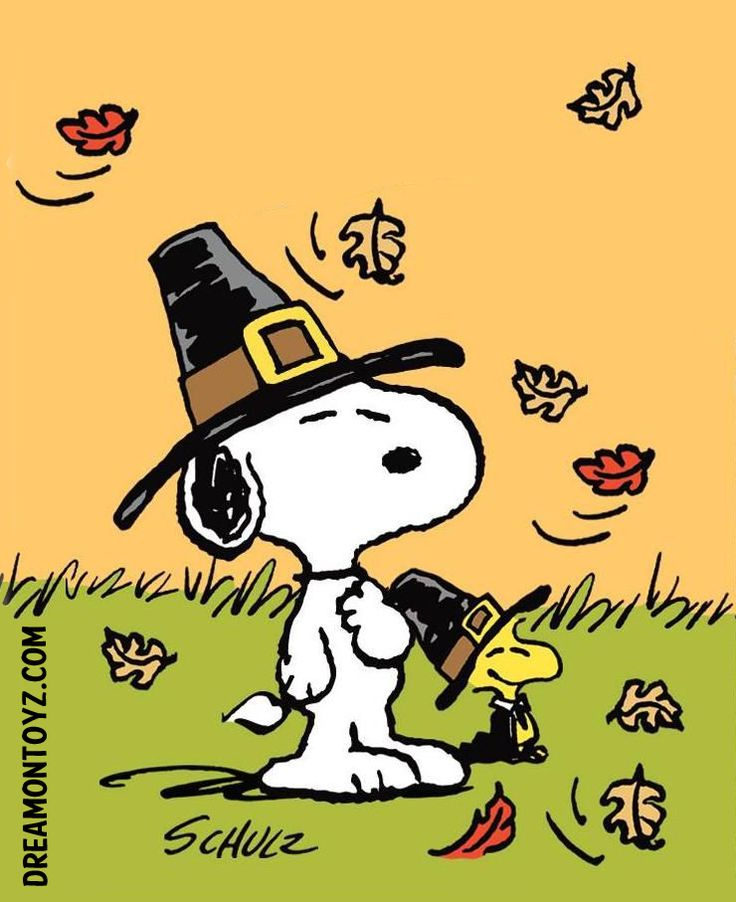 Pilgrims Snoopy and Woodstock in the grass with fall leaves