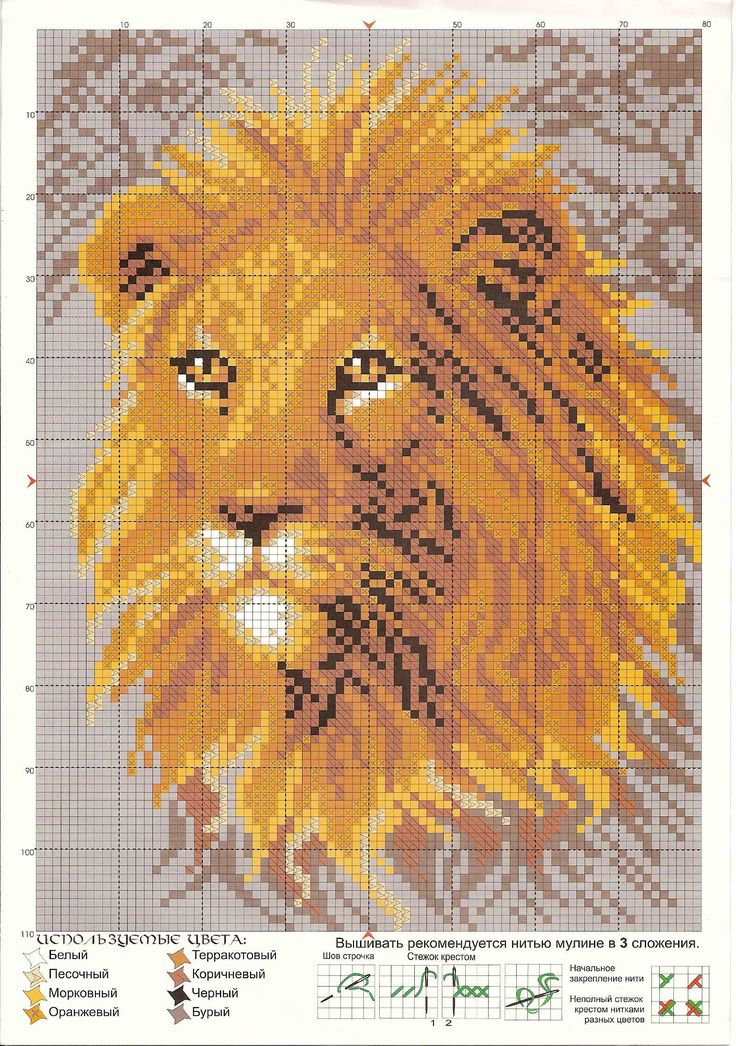 Pin By Kay Hagan Haller On Cross Stitch Cross Stitch