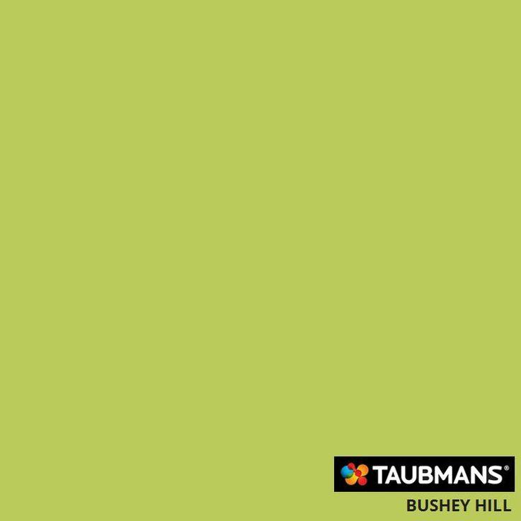#Taubmanscolour #busheyhill