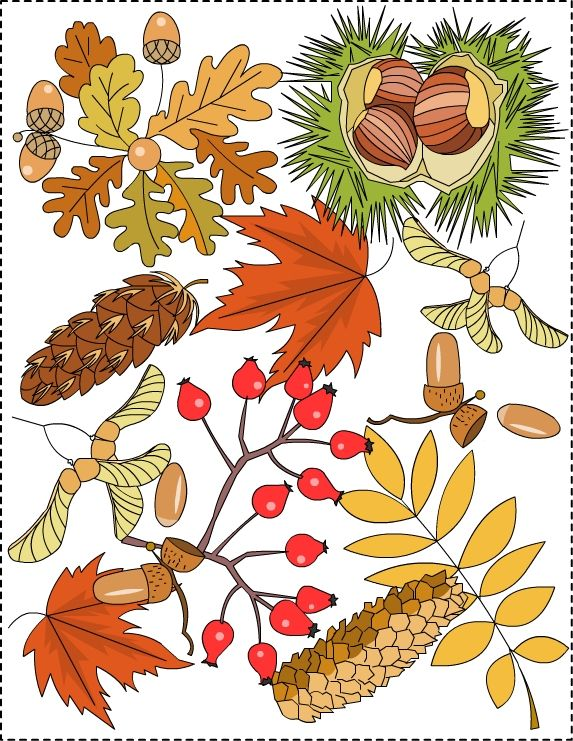 AutumnFrunzeSeminteColor.jpg 573×741 pixels