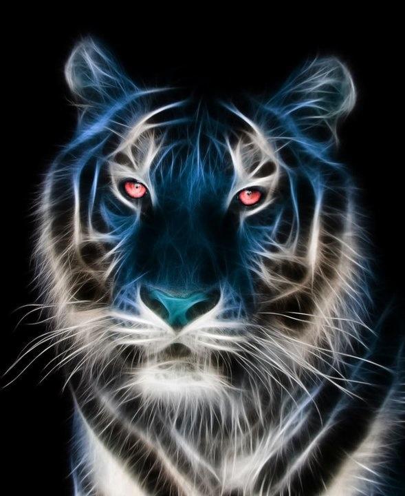 tiger fractal cats e - photo #21