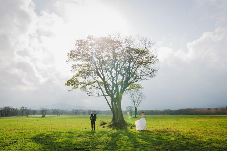 Jeju Pre-Wedding Outdoor Photography