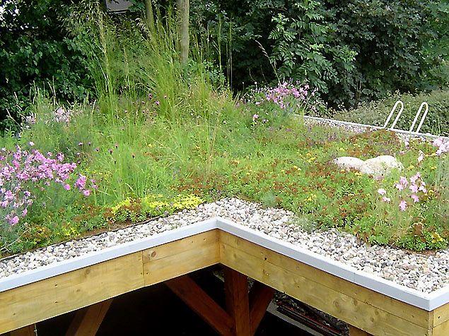 Carport Mit Extensiver Dachbegrunung Dachbegrunung Dachgarten Vertikaler Garten