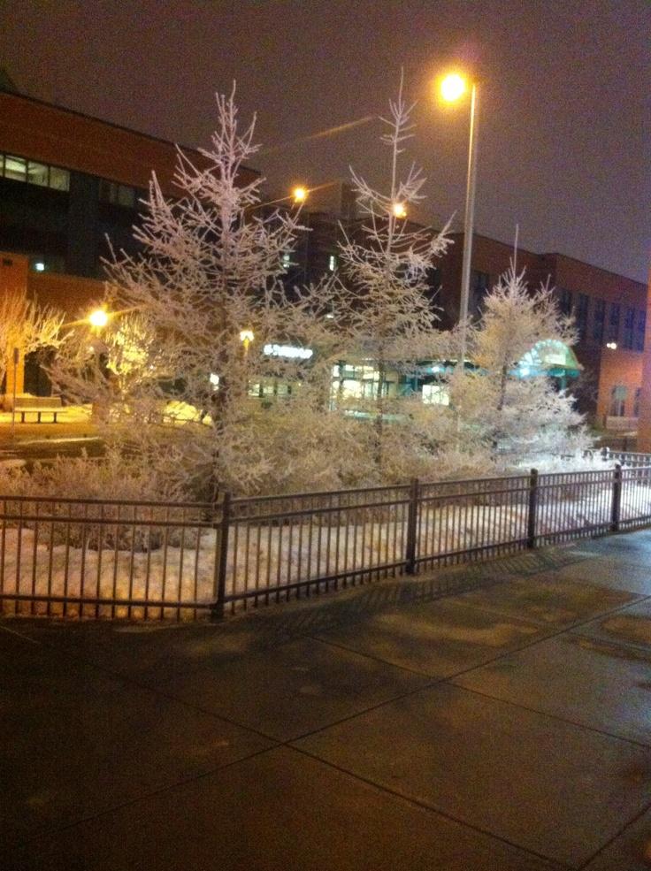 Winter, in all it's beauty!