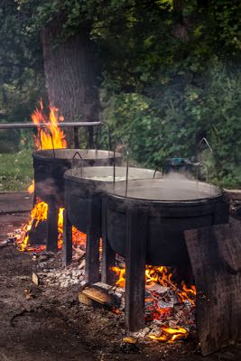1000 images about wisconsin on pinterest for Wisconsin fish boil