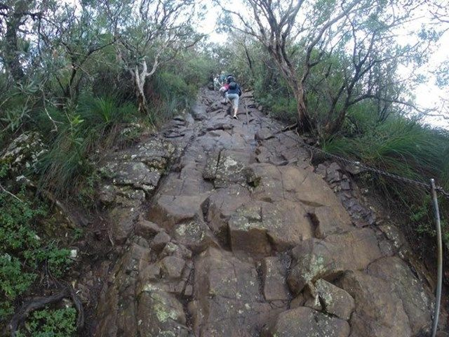 Tweed Range - Mt Warning Summit