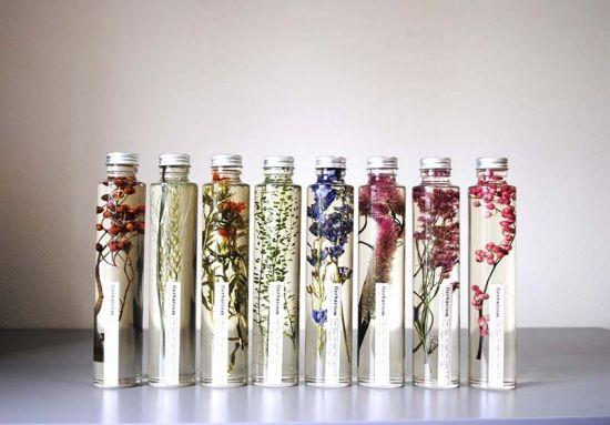 花言葉を持つ植物標本ハーバリウム,12種類をご用意。LUFFのハーバリウム通販はLickARTだけ。