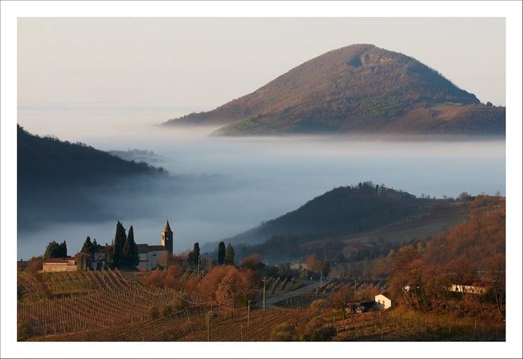 Fog among hills in Faedo (Padua - Veneto Region) Love that pic <3