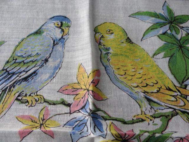 BEAUTIFUL Vintage Printed Hanky BIRDS Hankie PARROTS Handkerchief Lovely To Frame