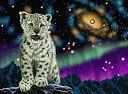tigre branco e brilhos