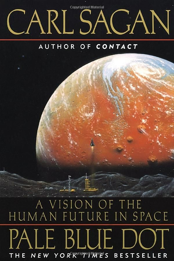 Pale Blue Dot: A Vision of the Human Future in Space by Carl Sagan. A classic. Carl Sagan=amazing.