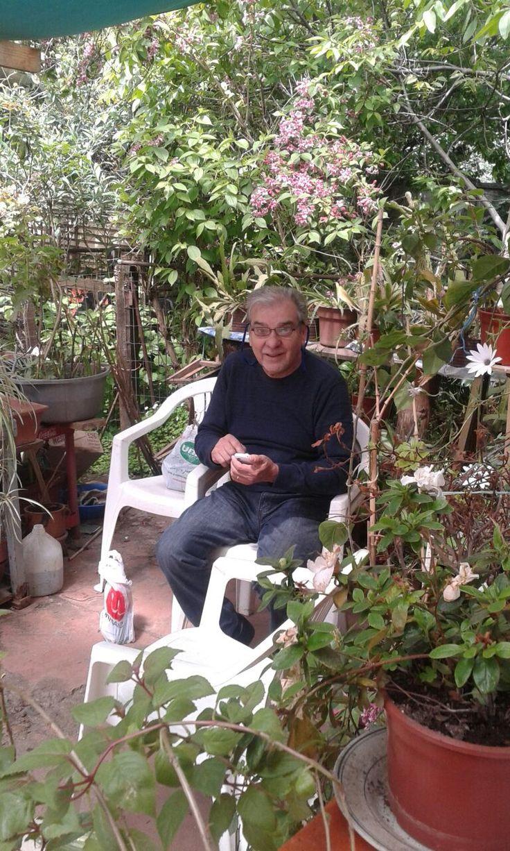 El jardín de la abuela Alicia, tan sólo verlo en esta foto provoca alegría.