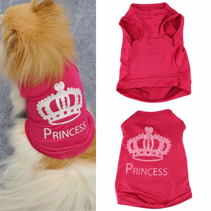 Every little girl needs a princess shirt – even the furry ones! Free shipping!
