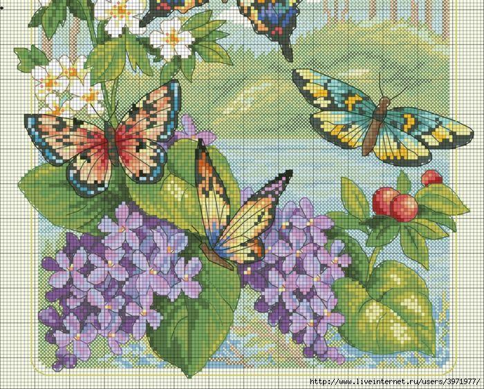Превью Butterflies -7101 (700x563, 482Kb)