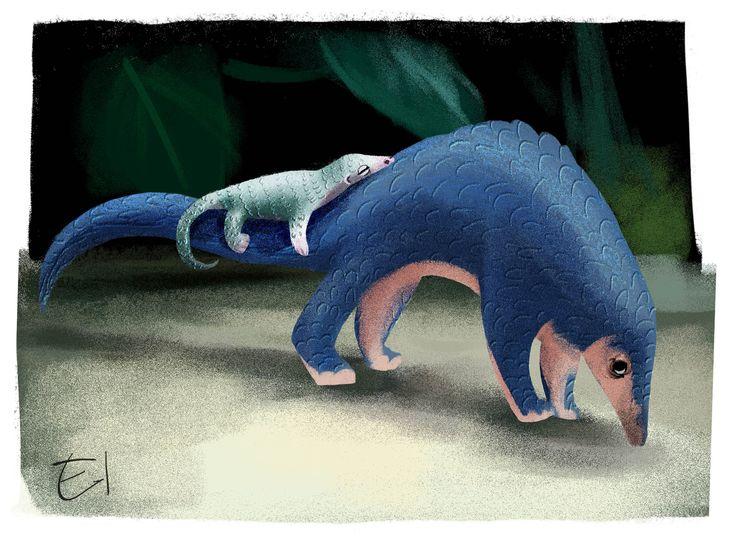 Pangolins sketch