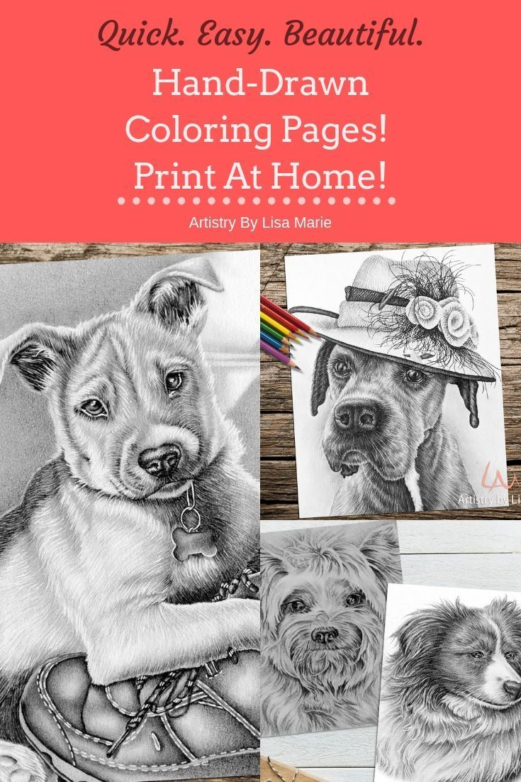 Dog Pictures That You Can Print Out