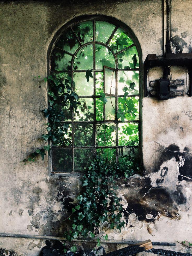 Abandoned house. Frozen in time. Beautiful window. Denmark