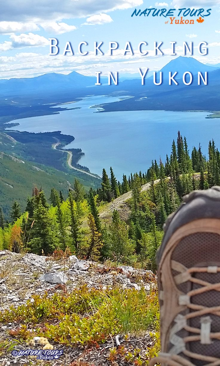 Yukon, Canada is home to idyllic lakes, sparkling rivers, majestic mountains, glaciers and abundant wildlife. In Yukon's Kluane National Park lies the largest non-arctic ice field in the world. Nature Tours of Yukon has an adventure for you!.