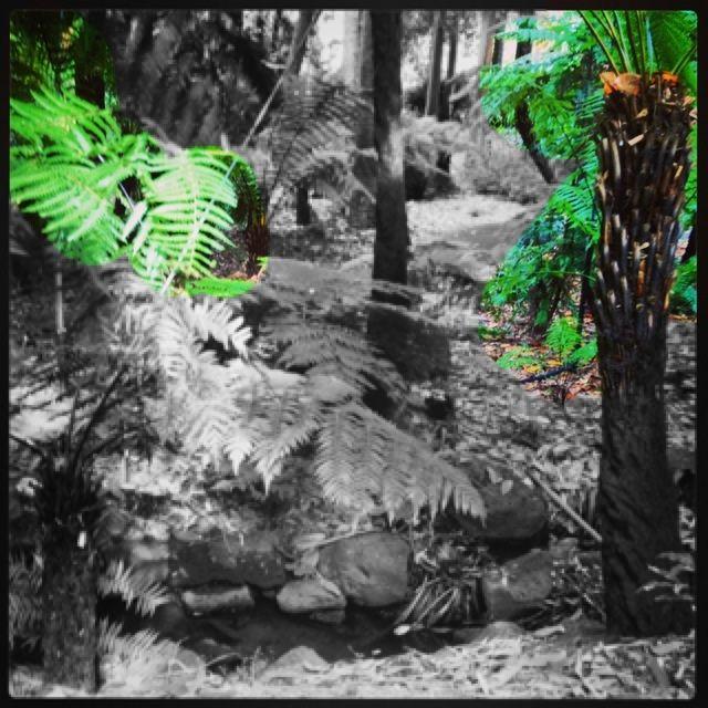 Botanic gardens life