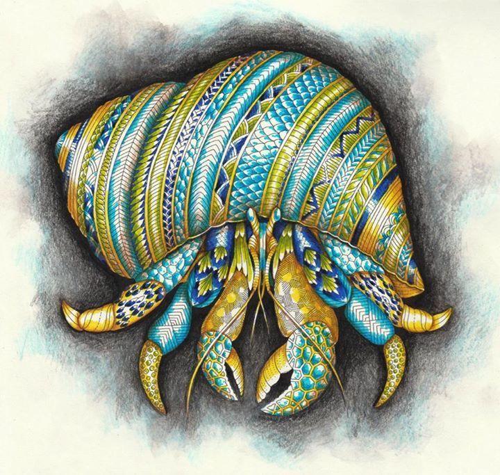 Watercolor Pencils Art Watercolors Fish Zentangle Pens Zentangles Faber Castell Manila Crabs