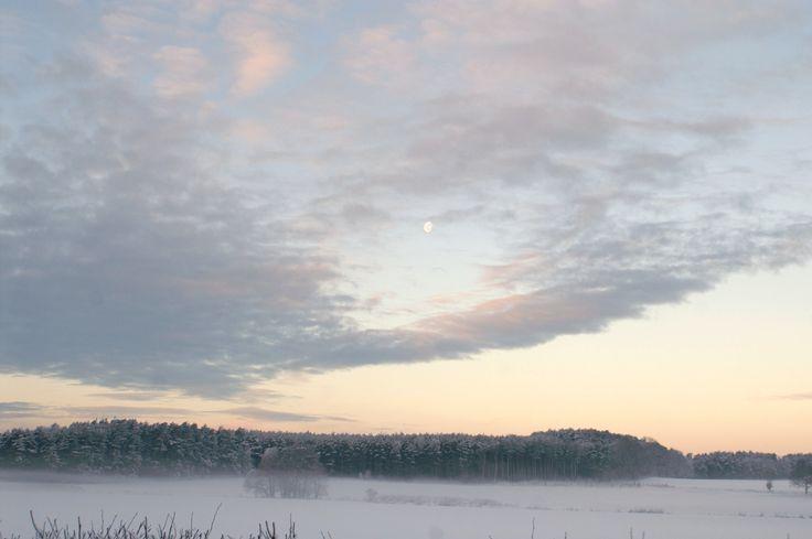 Winter morning, Village, Forest, pink, purple sunrise