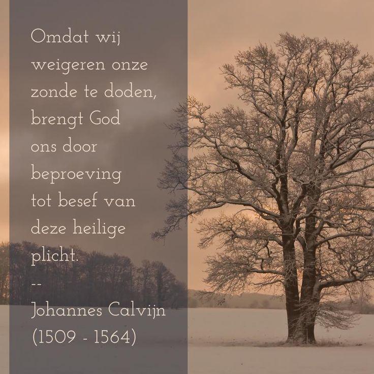 Heilige plicht - Johannes Calvijn (1509 – 1564)