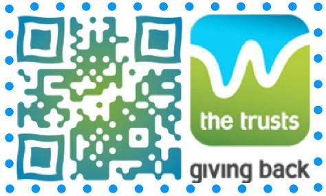 Put a moment of creativity around your QR Codes. You'll get nearly 50% more scans! (Sample only)