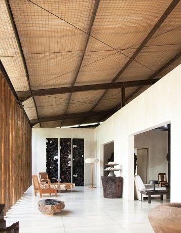 1000 id es propos de maisons tropicales sur pinterest - Faire pousser citronnier ...