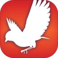 Audubon Bird Guide by National Audubon Society