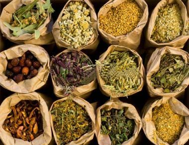 30 Most Popular Herbs for Natural Medicine