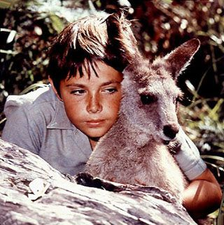 """What's that Skippy? The kids are trapped down the old mine-shaft, again?"".   'Skippy The Bush Kangaroo' - Australian television's answer to 'Lassie' and 'Flipper' but way cooler (anyone can get a dog or fish)."