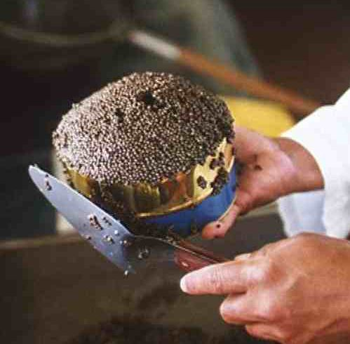 caviar-6-fillng-tin.jpg